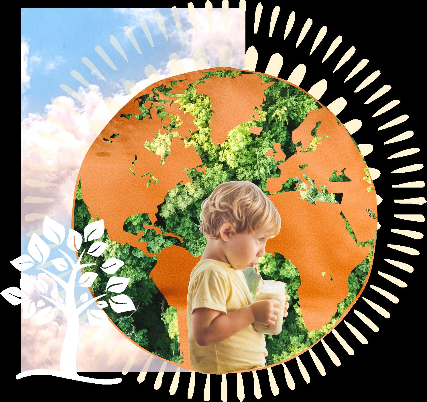 Cajou Lovers : développement durable